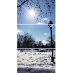nieve-Farol-REF-450